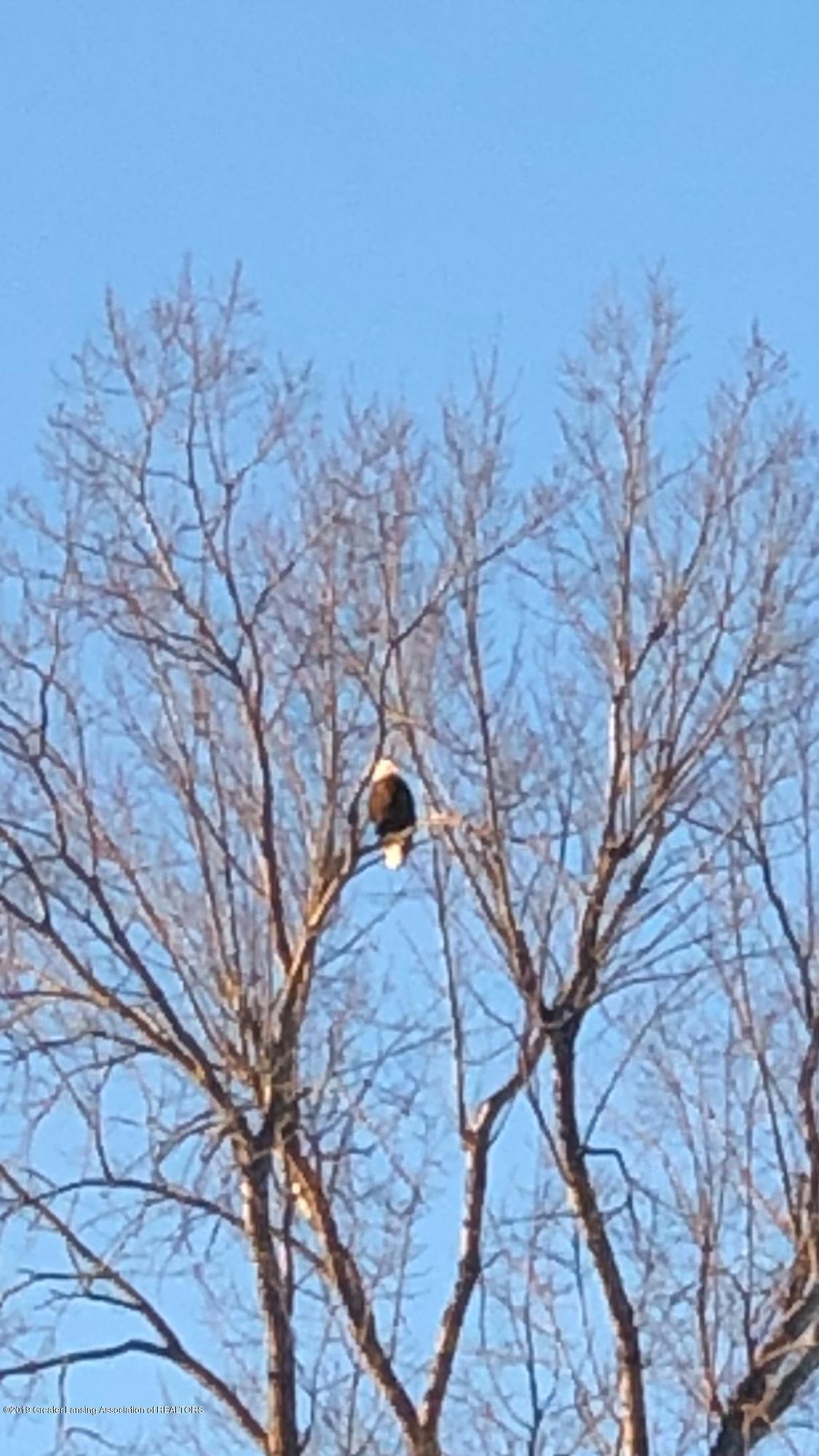 4801 Round Lake Rd - eagle - 34