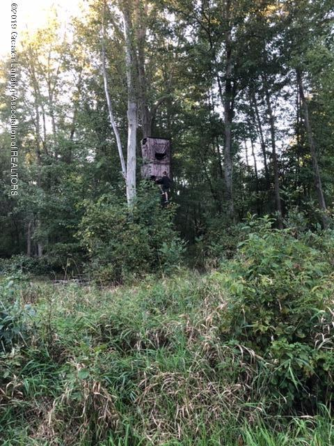 4801 Round Lake Rd - Deer Blind - 33