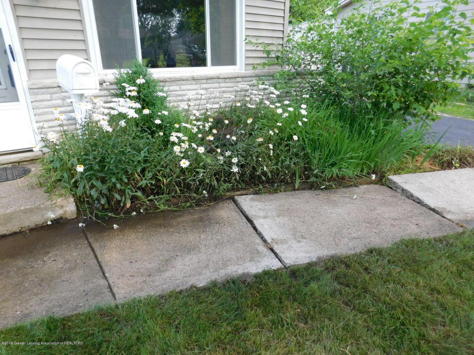 4111 Clayborn Rd - PERRENIAL FLOWERS - 45