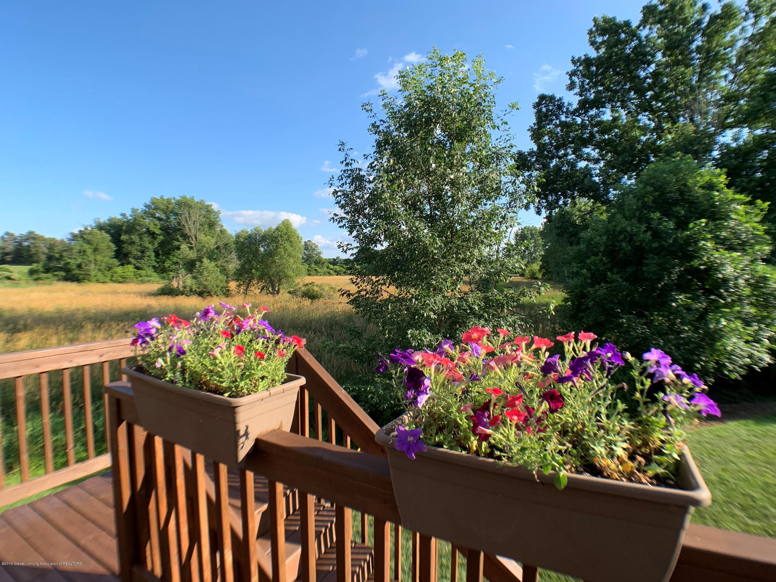 1405 Moose Dr - Backyard View - 34