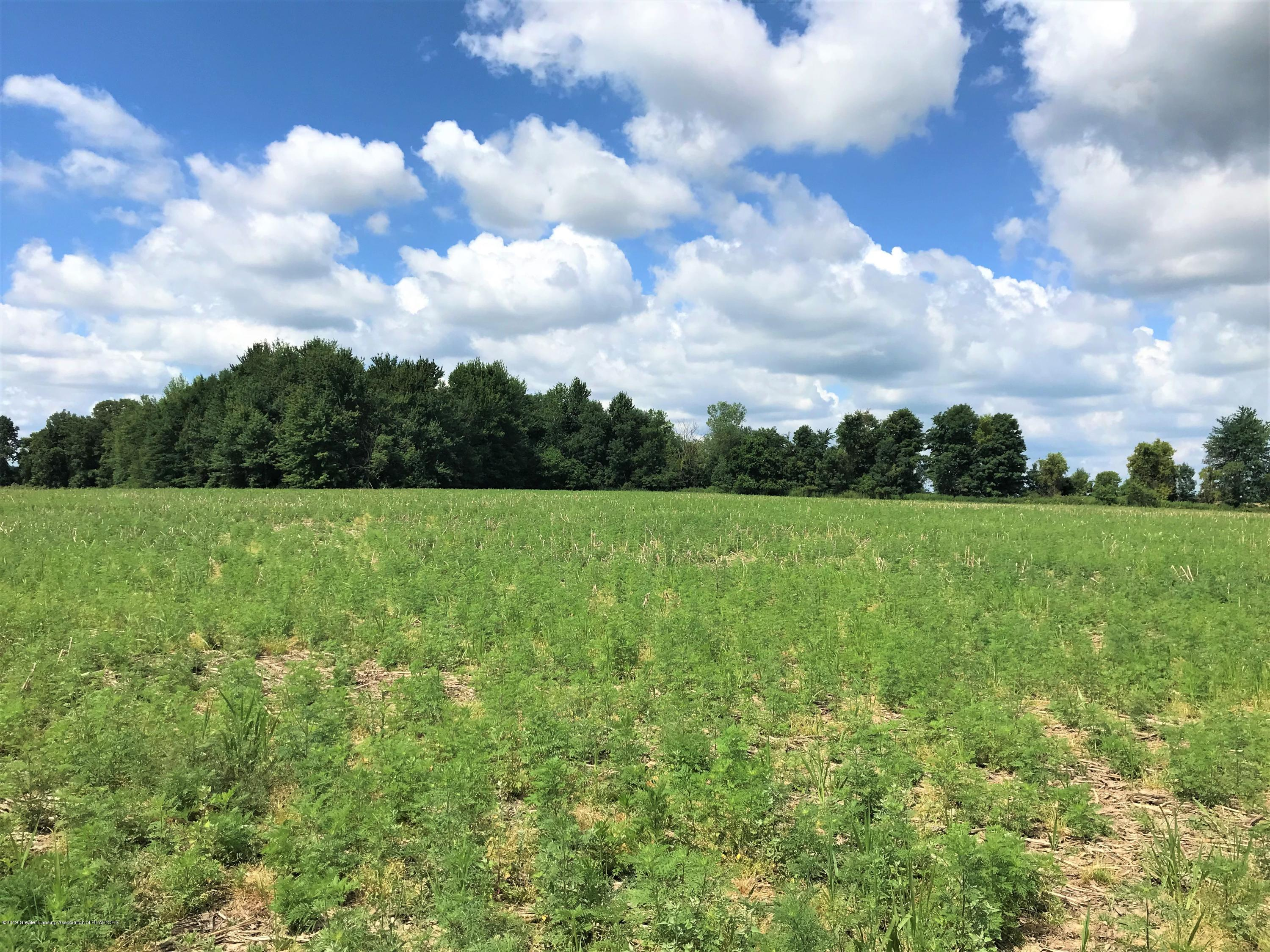 0 W Vermontville Hwy - Mid Lot W view - 7