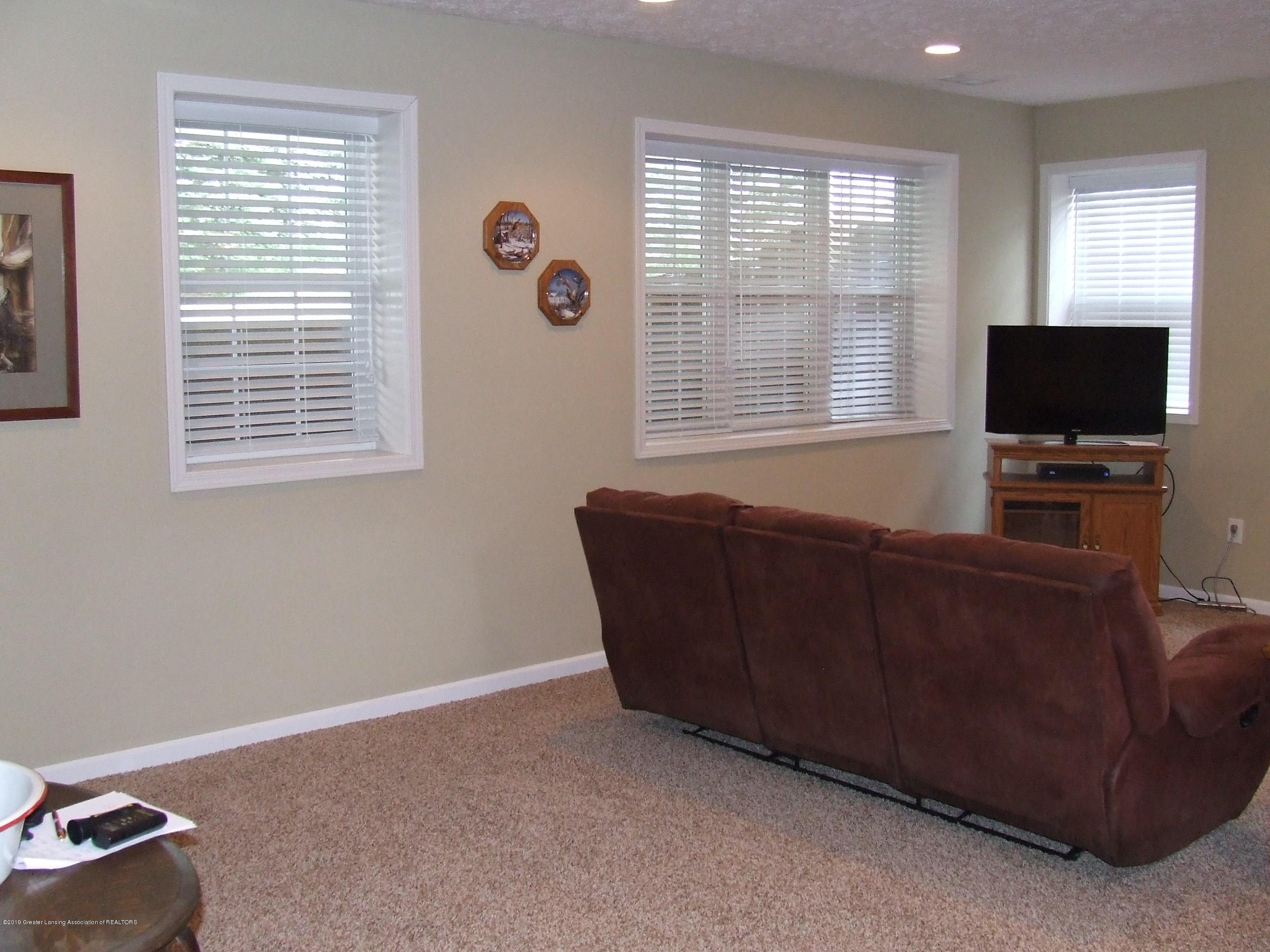 10812 Canterbury Ln - Lower level family room - 22