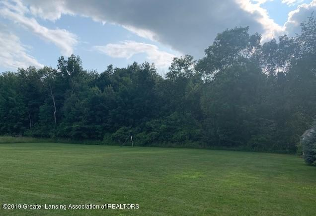 3553 W Maple Rapids Rd - VIEW1 - 8
