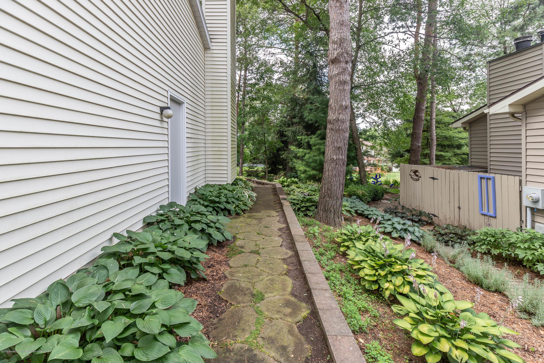 13210 White Pine Dr - Backyard - 41