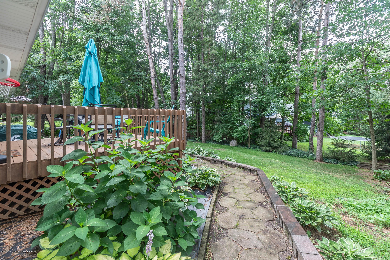 13210 White Pine Dr - Backyard - 38