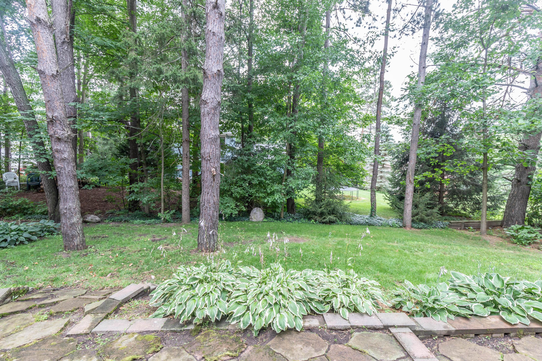 13210 White Pine Dr - Backyard - 42