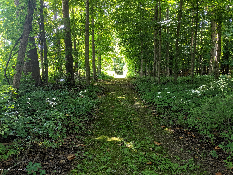 9505 Oneida Rd - Trail - 44