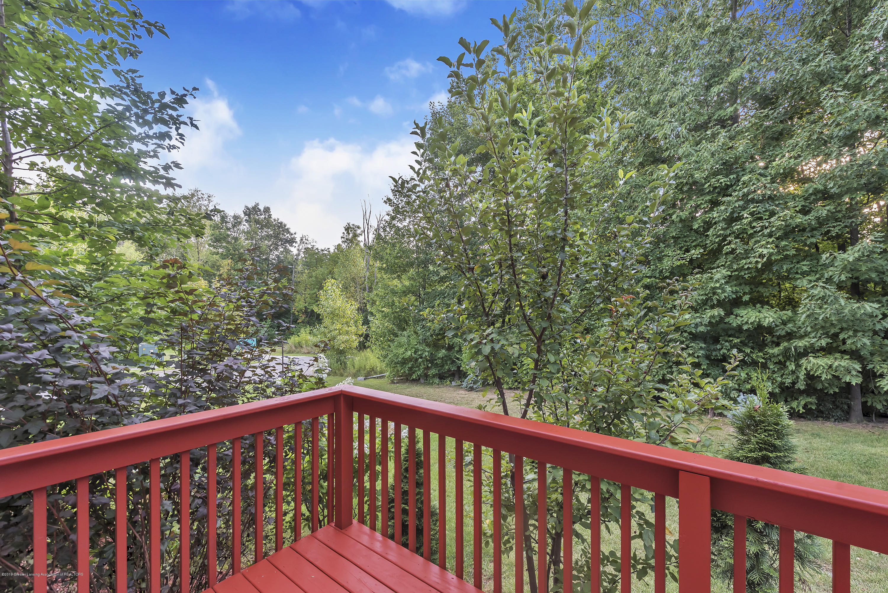 4229 Rain Forest Cir - 4229-Rainforest-Circle-Okemos-MI-windows - 47