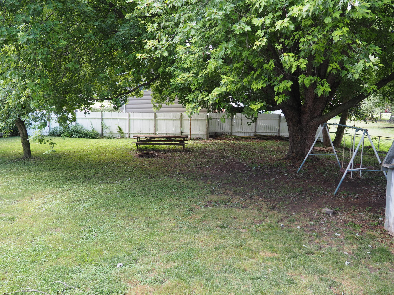 415 Morley St - Backyard - 7