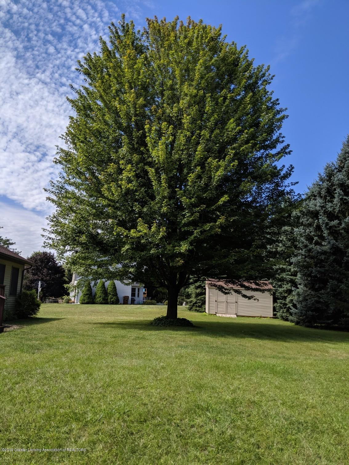 1258 Castlewood Cir - yard - 29