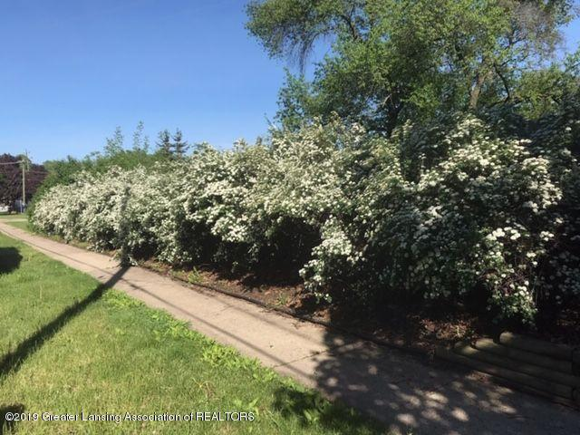 415 Brook St - bridalveilspirea - 4