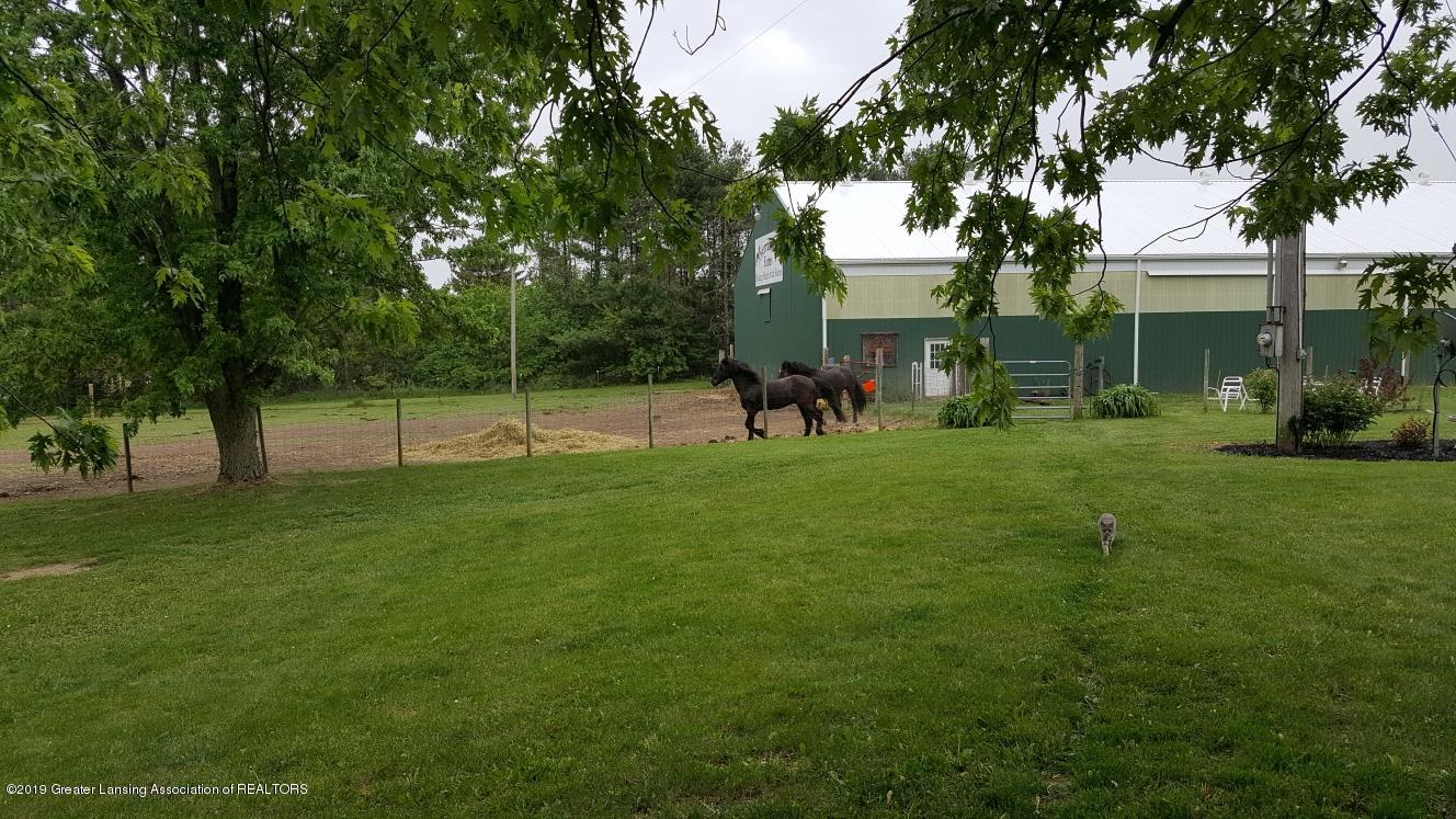 5953 W Cutler Rd - Horses in Large Pasture - 45
