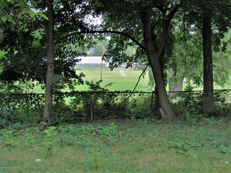 425 S Holmes St - Back Yard (Park Beyond) - 25