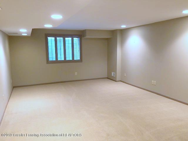 242 Abbott Woods Dr - Lower Level Family Room - 28