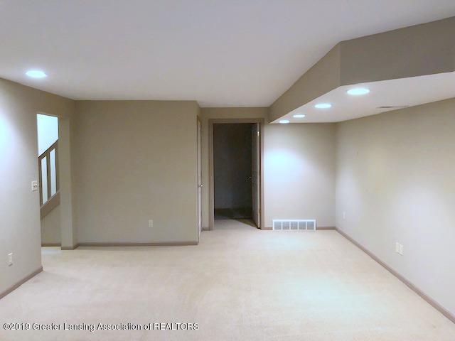 242 Abbott Woods Dr - Lower Level Family Room - 29