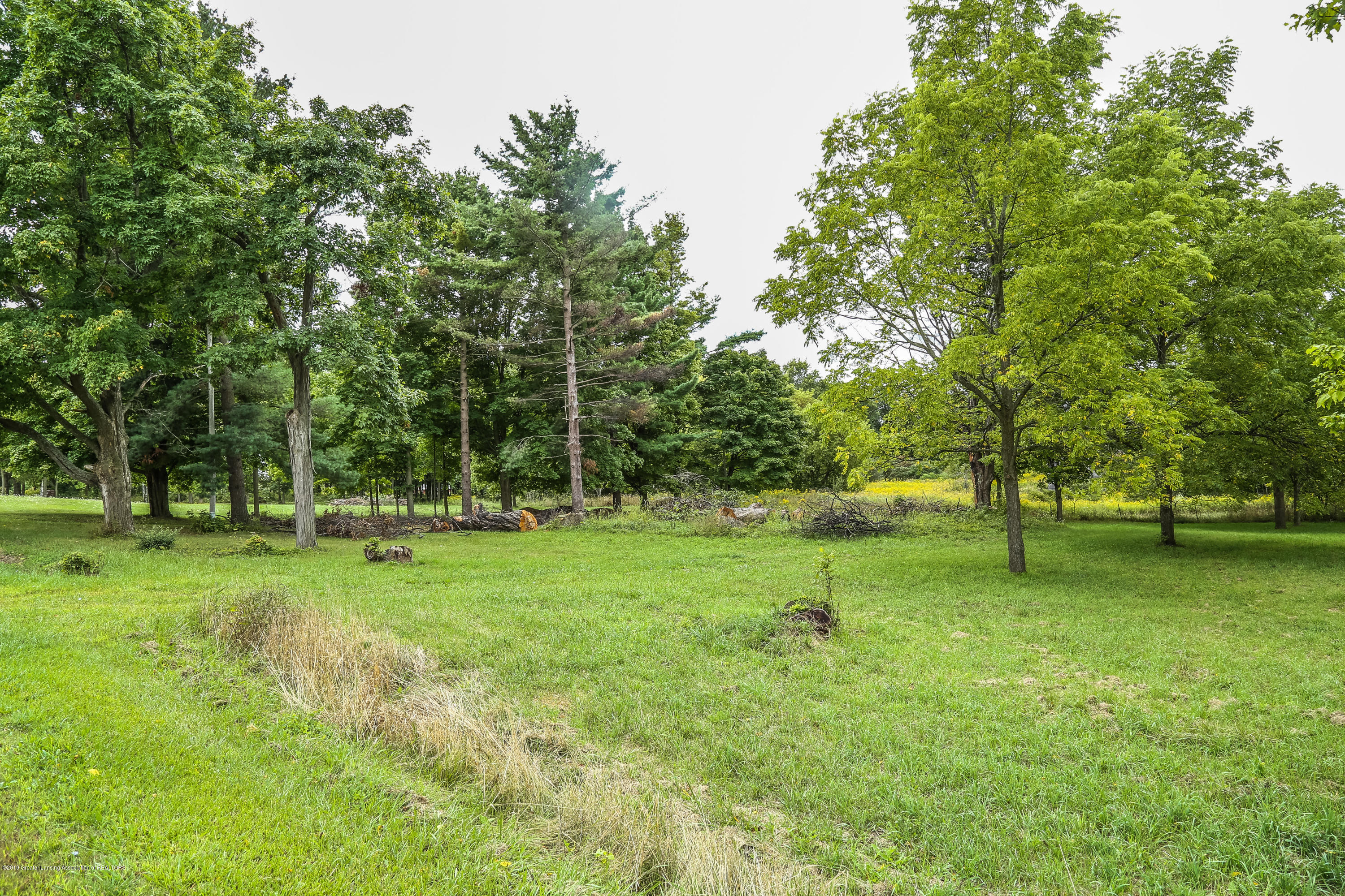 802 S Waverly Rd - Vacant Land - 1