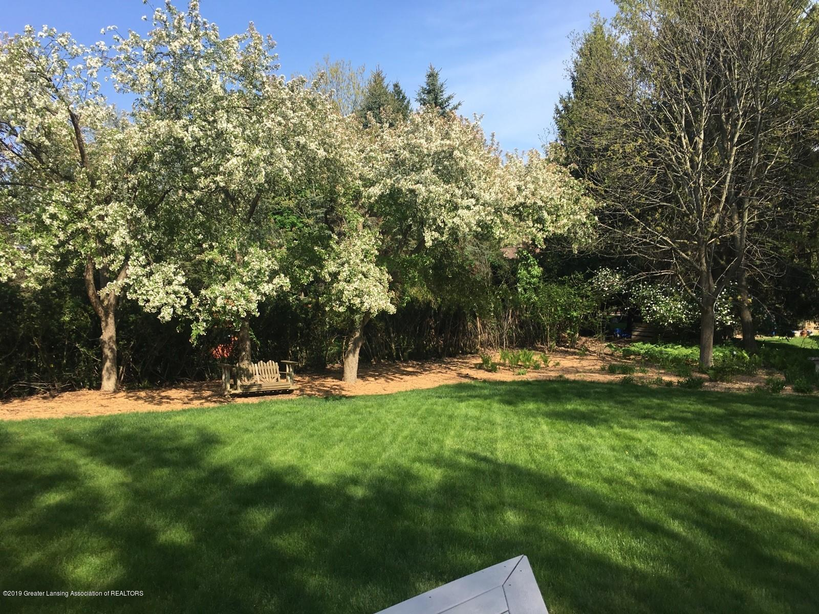 1871 Yosemite Dr - Back Yard - 5