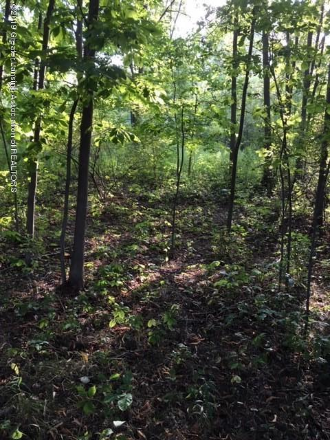 4800 N Smith Rd - Land - 3