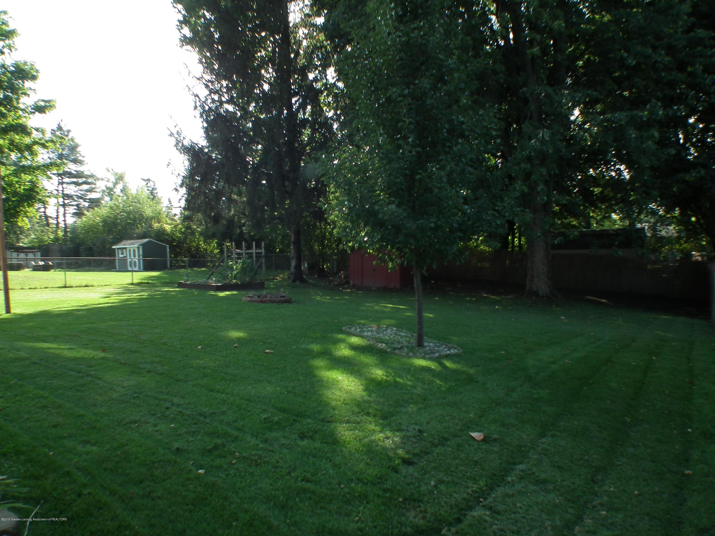 2315 Byrnes Rd - Back yard b - 34
