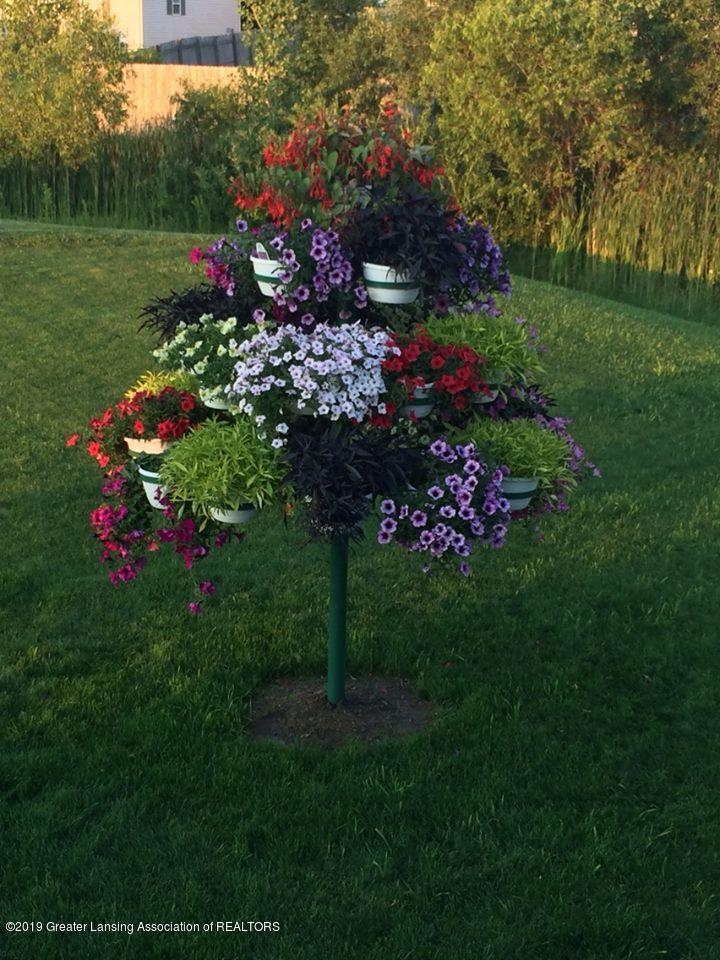 1300 Kelcrasta Dr - Kelcrasta flower pot tree - 46