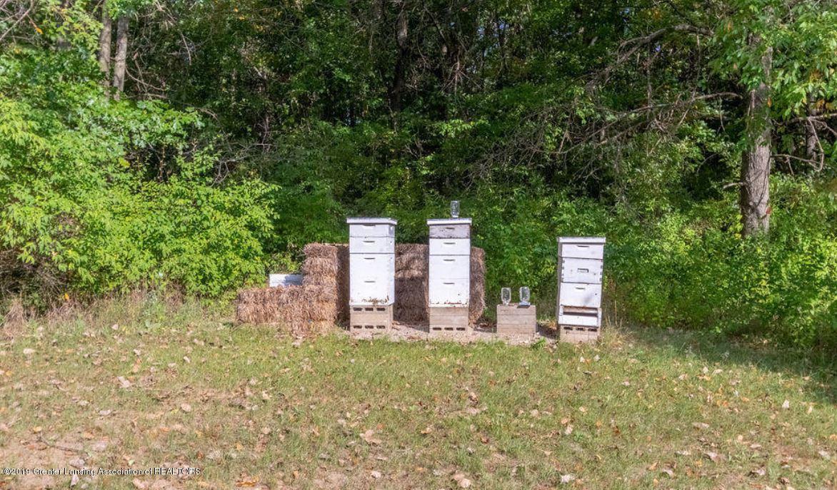 8502 Doyle Rd - Bee Hiv - 9