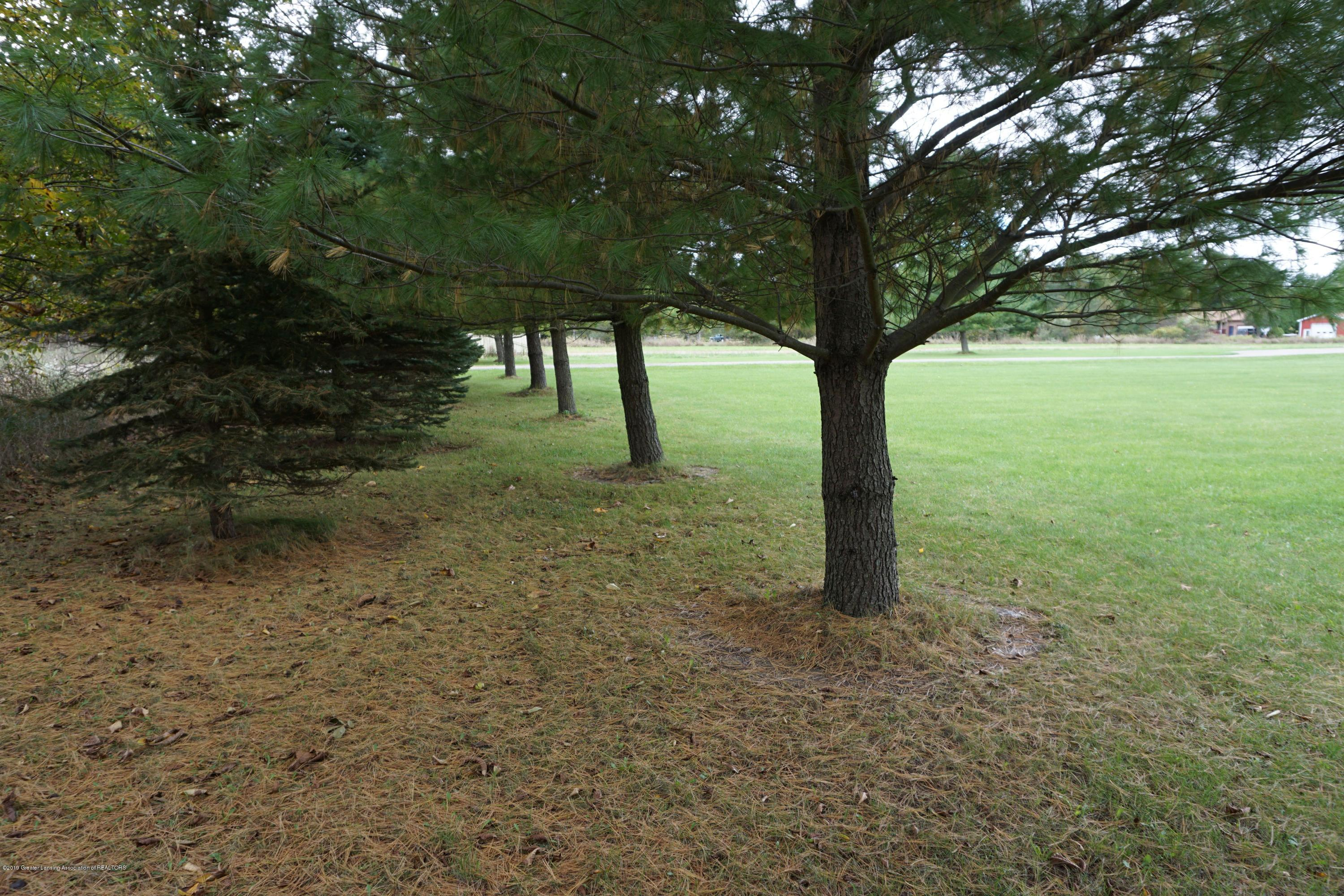 10130 Hollister Rd - Tree Line out front - 21