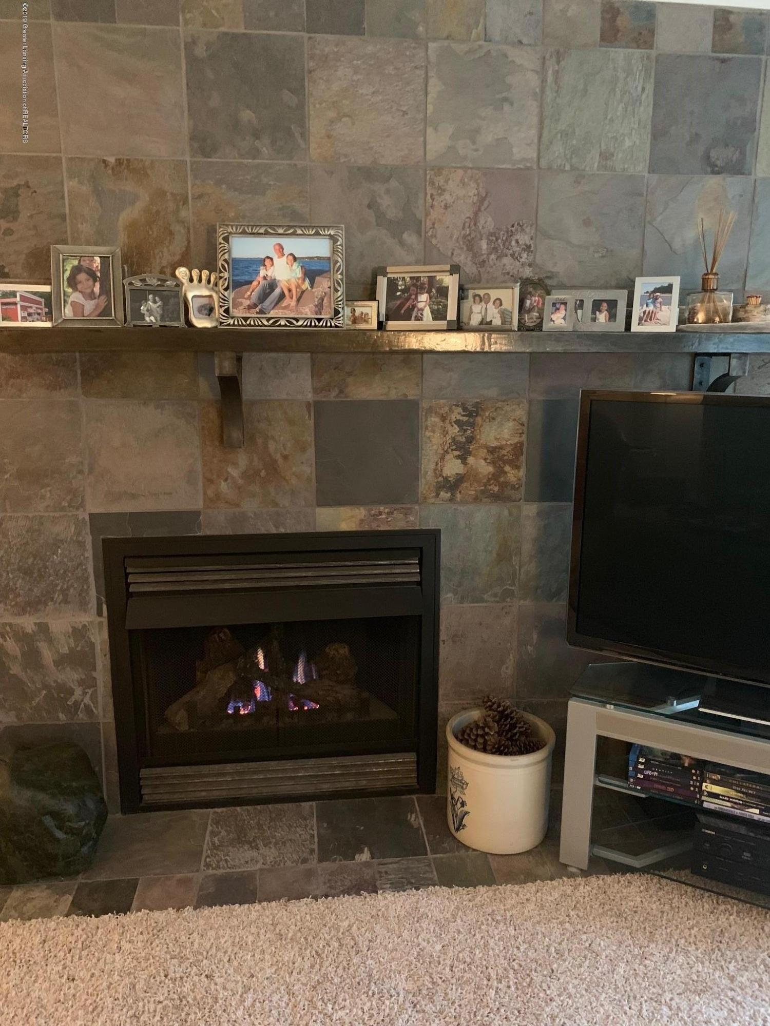 2926 Mt Hope Rd 7 - fireplace - 14