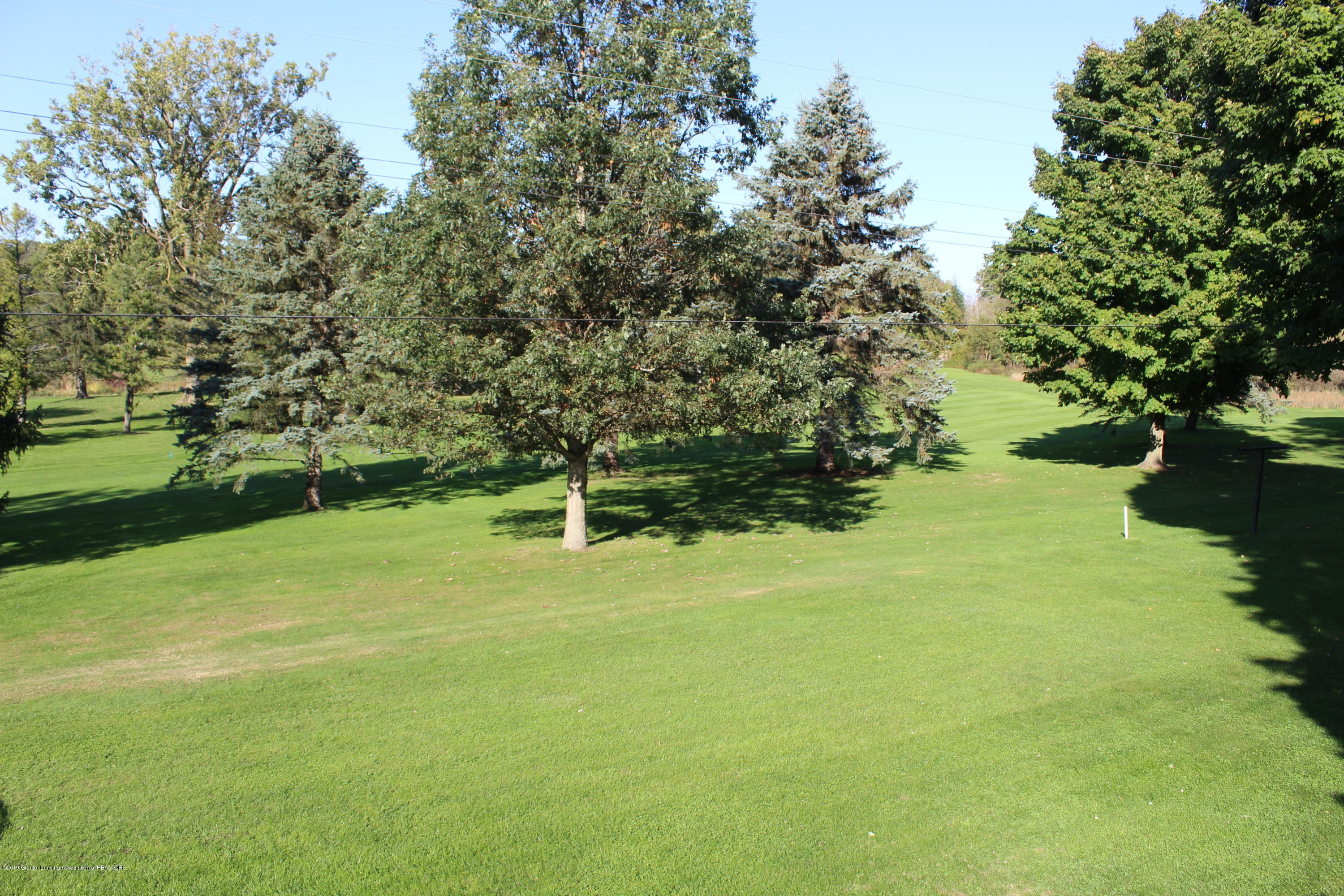 4967 Pardee Rd - backyard - 10