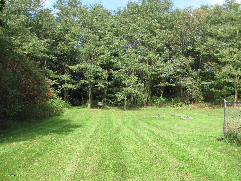 3643 E Vermontville Hwy - Back yard - 7