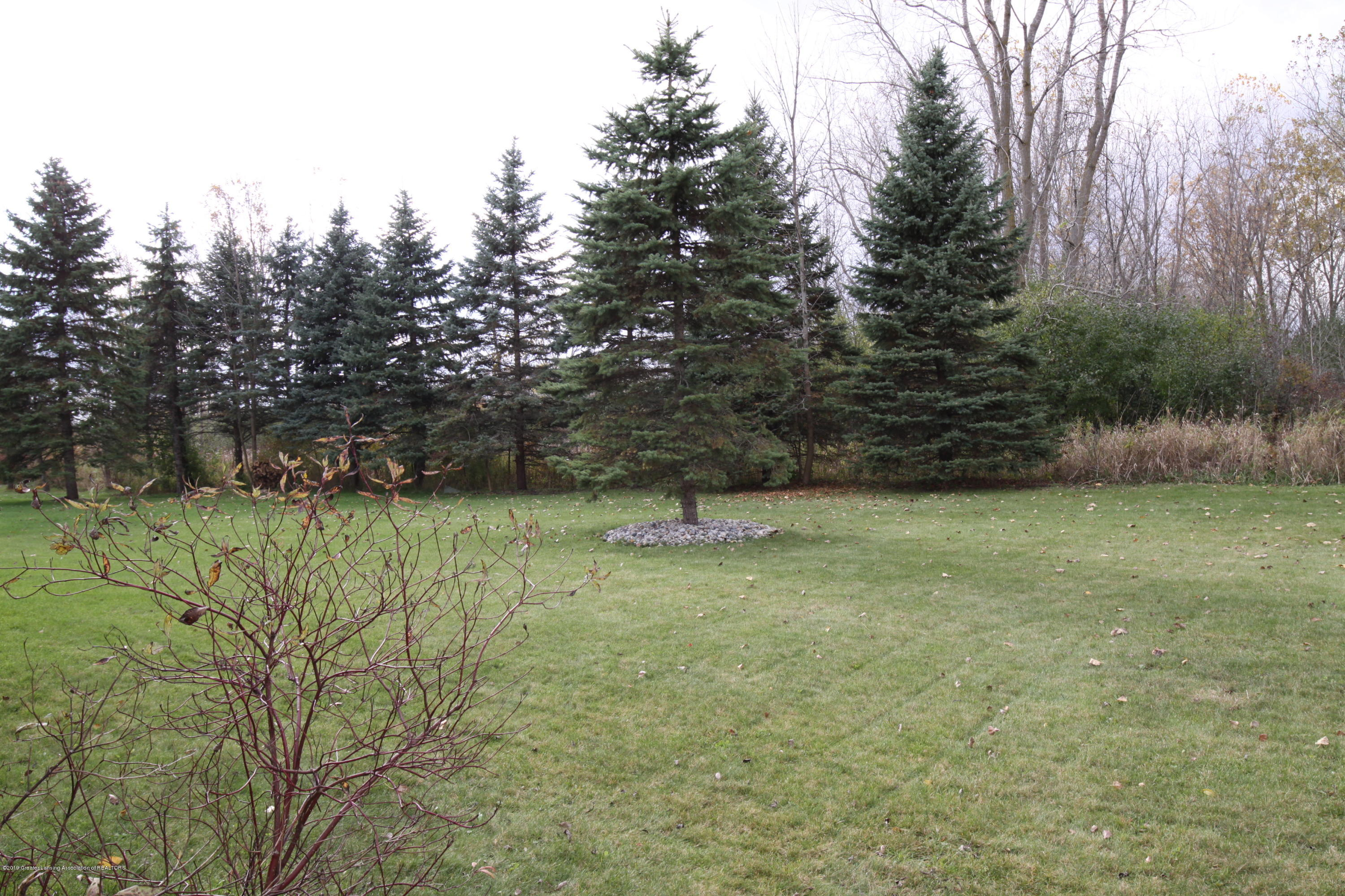 3735 Parula Dr - Backyard -West View - 13