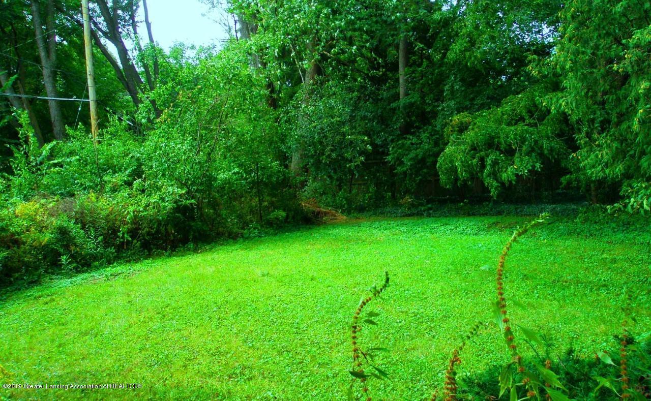 1019 Abbot Rd - thumbnail_backyard - 5