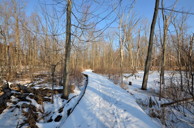 3631 Beech Tree - 3631 Beech Tree Neighborhood Boardwalk - 60