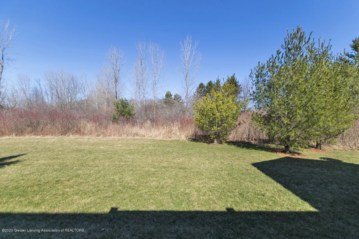 2424 Turning Leaf Ln - VIEW - 23