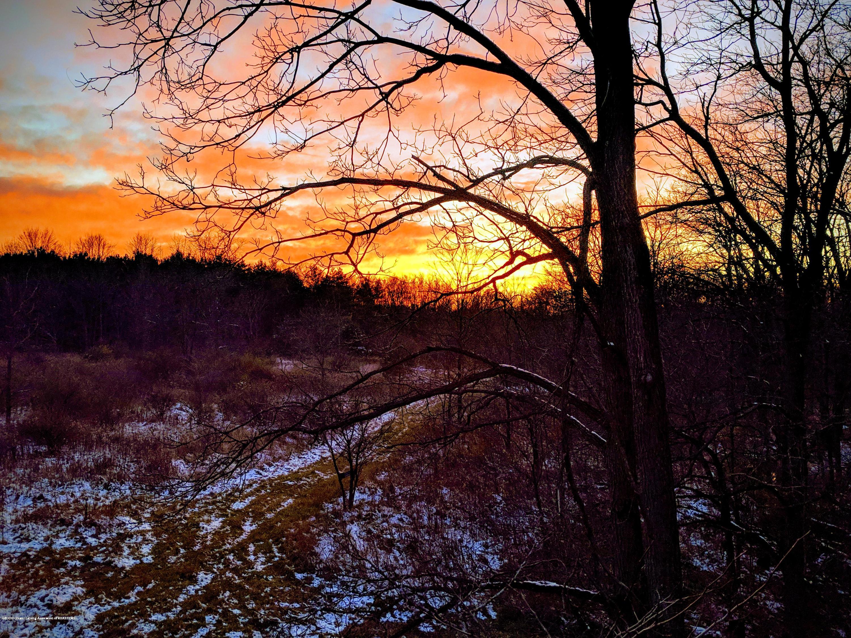 1165 Harper Rd - Sun Rise - 59
