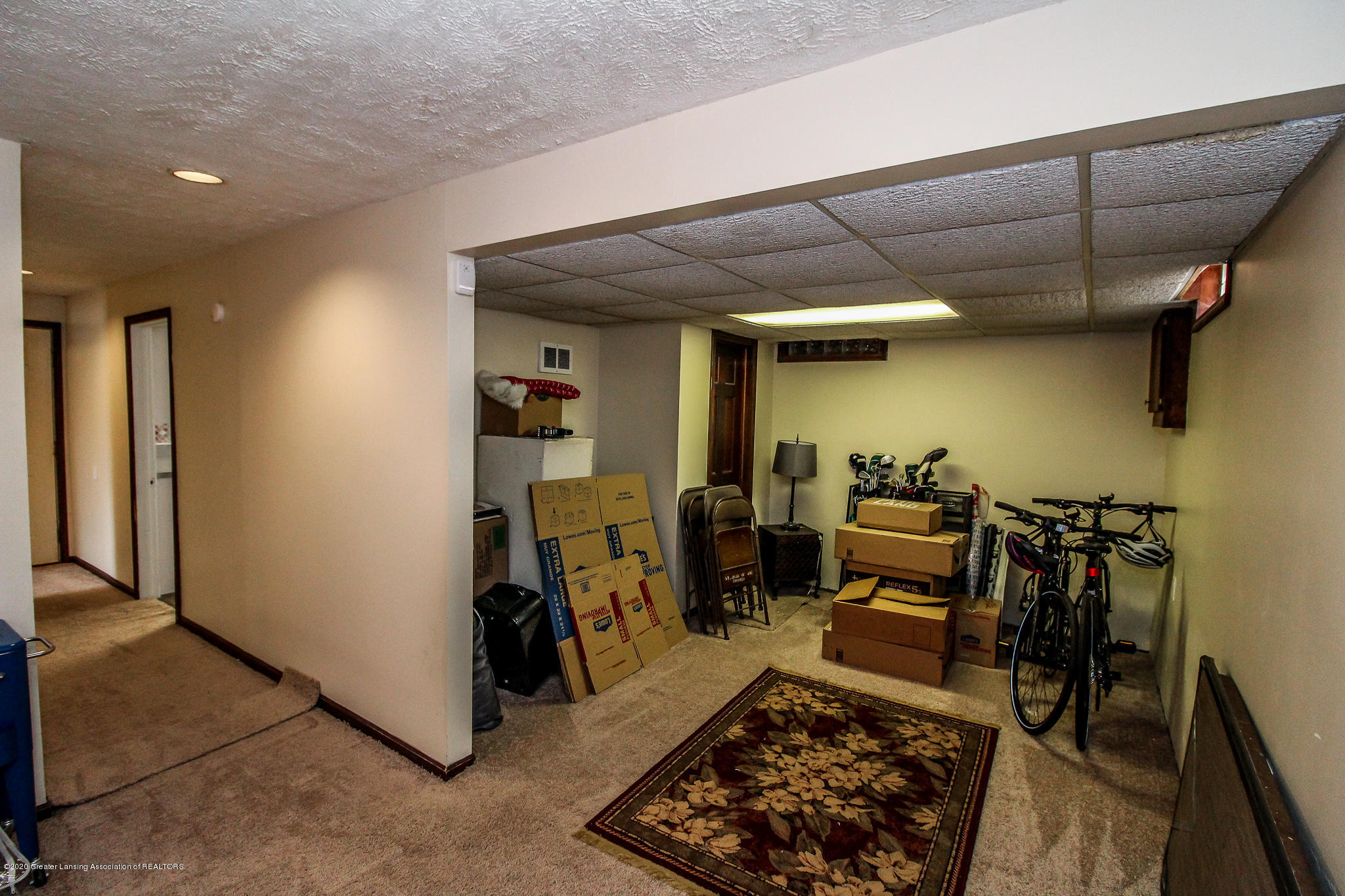 1423 Spearberry Ln - Lower Level - 40