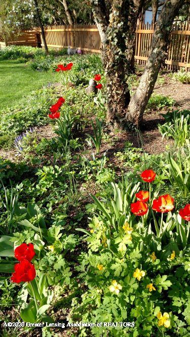 828 Tanglewood Ln - Backyard Flower beds - 56