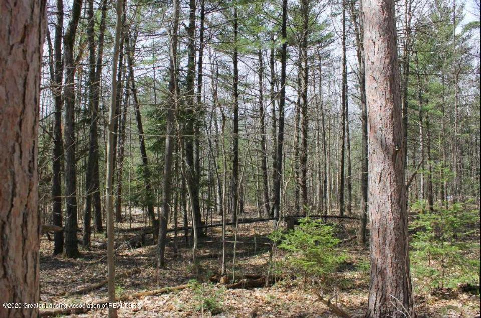 Lot 23 Indian Woods Trail - Property - 10