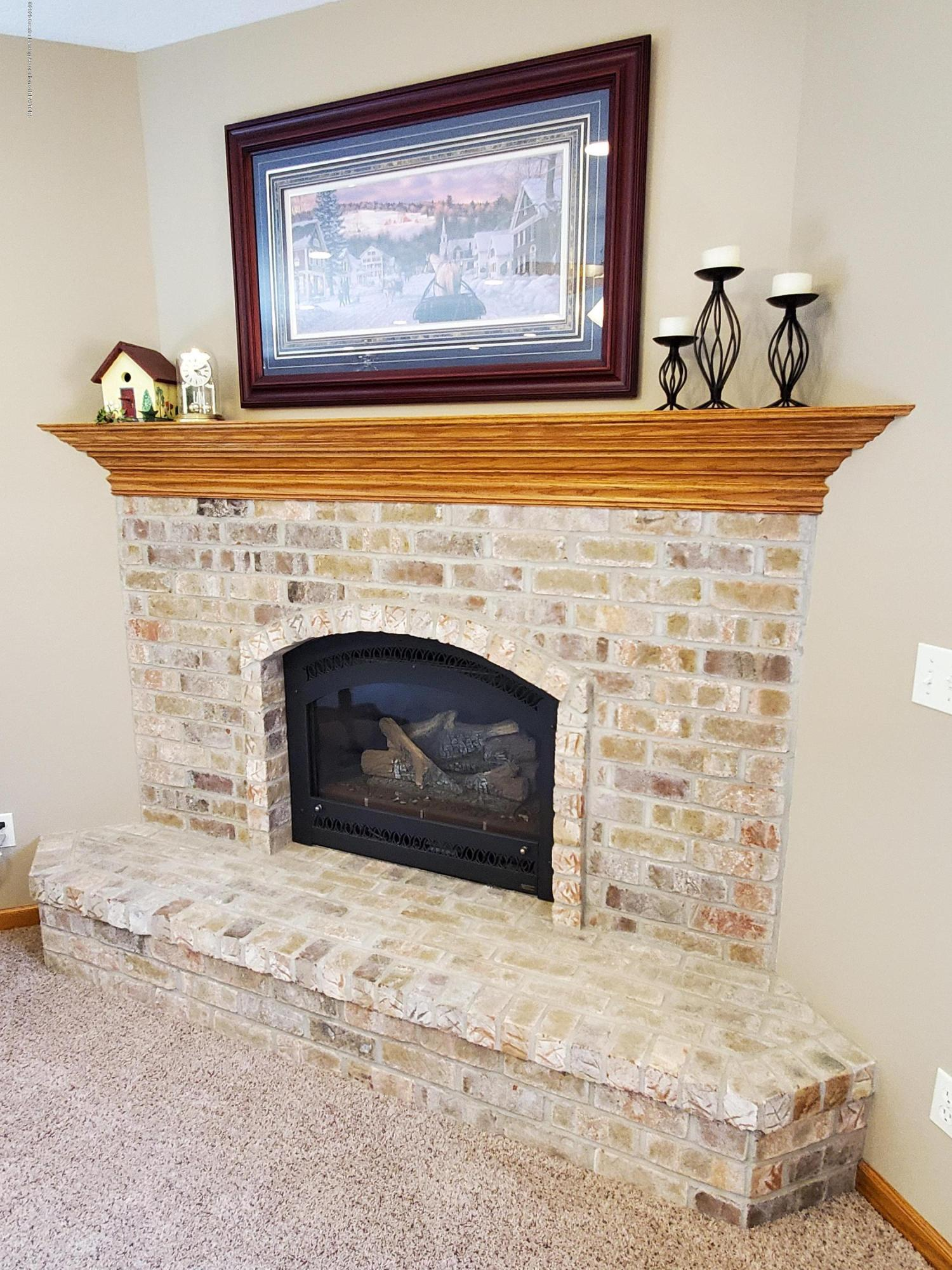 558 N Wheaton Rd - Lower Level Gas Fireplace - 47