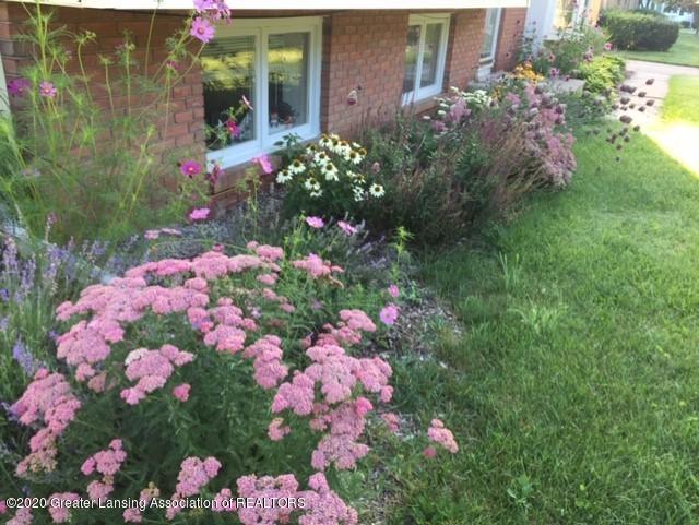 1667 Melrose Ave - Yard/Garden - 35