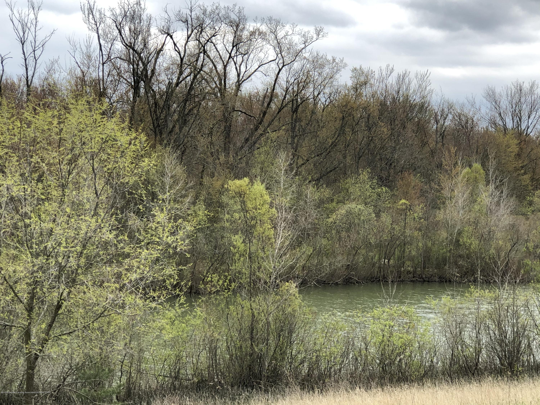 Parcel 12 0 Stone River - IMG_4229 - 7