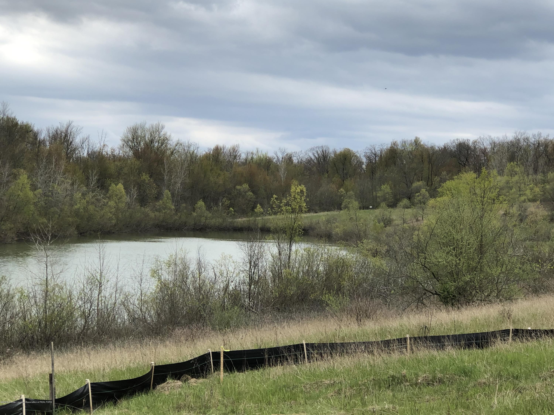 Parcel 12 0 Stone River - IMG_4227 - 8