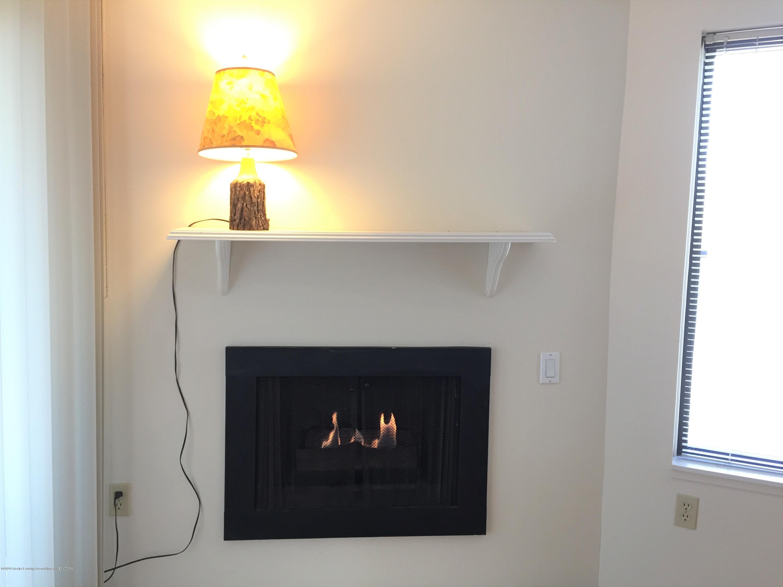 1457 E Pond Dr 36 - 6 Fireplace - 6