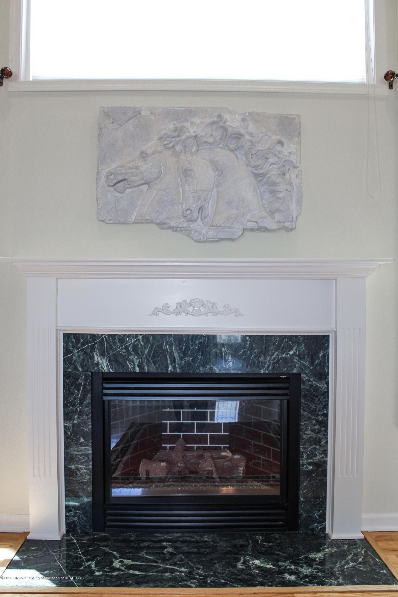 1086 Williamsburg Ct - Gas Fireplace - 6