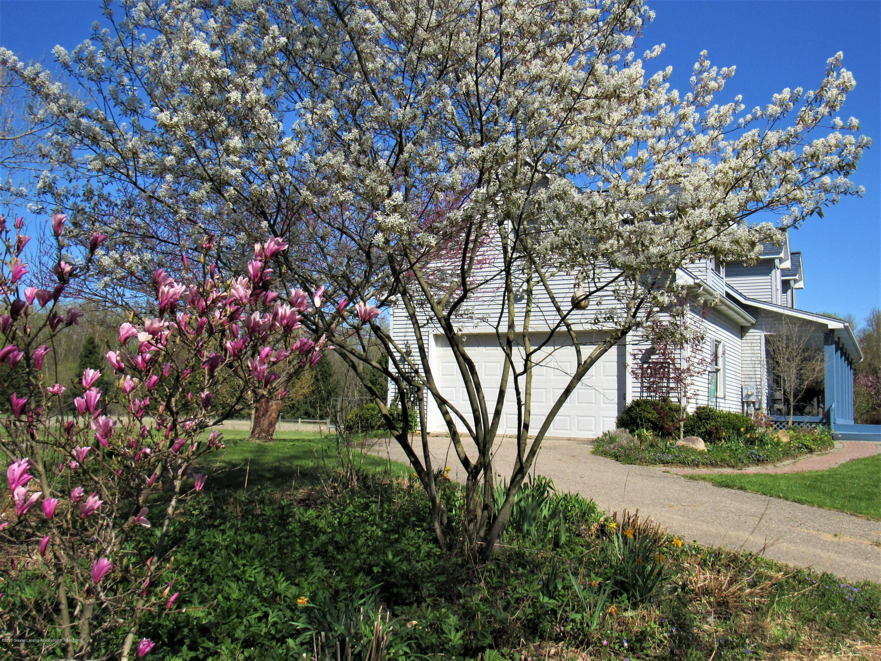 11772 Maryellen Dr - Blossoms and Garage - 3