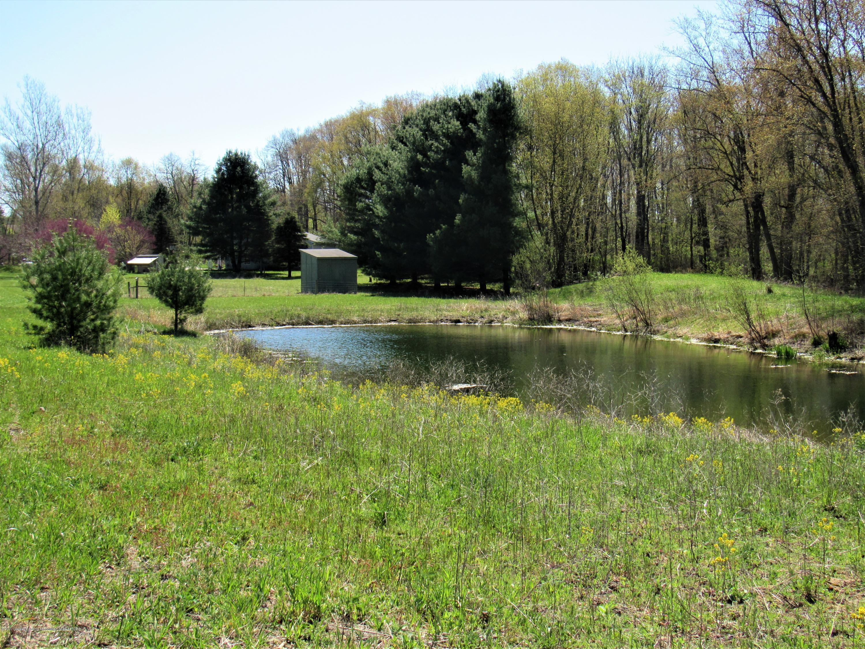 11772 Maryellen Dr - Swimming/Fishing Pond - 37