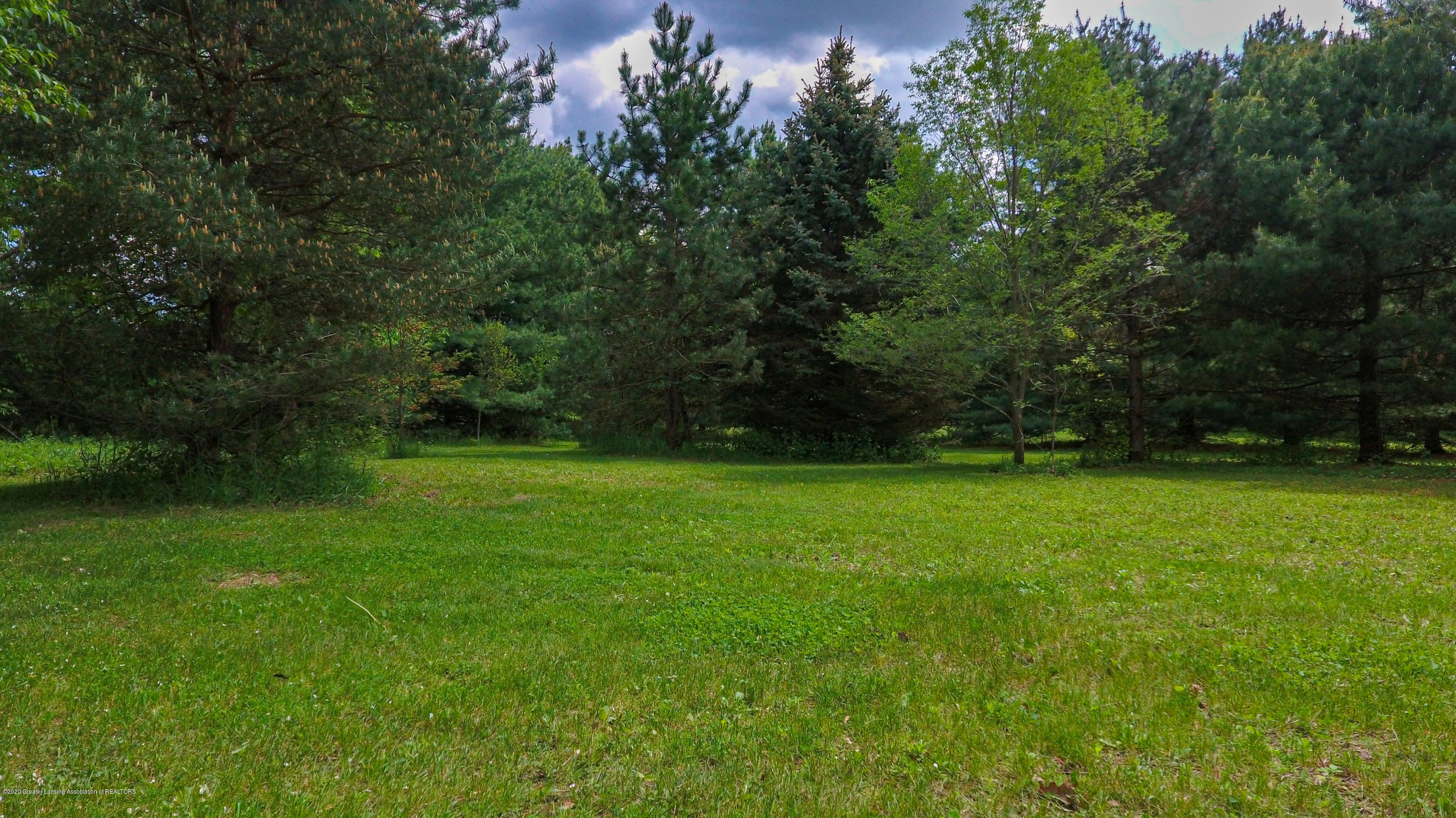 13532 Turner Rd - Back yard - 50