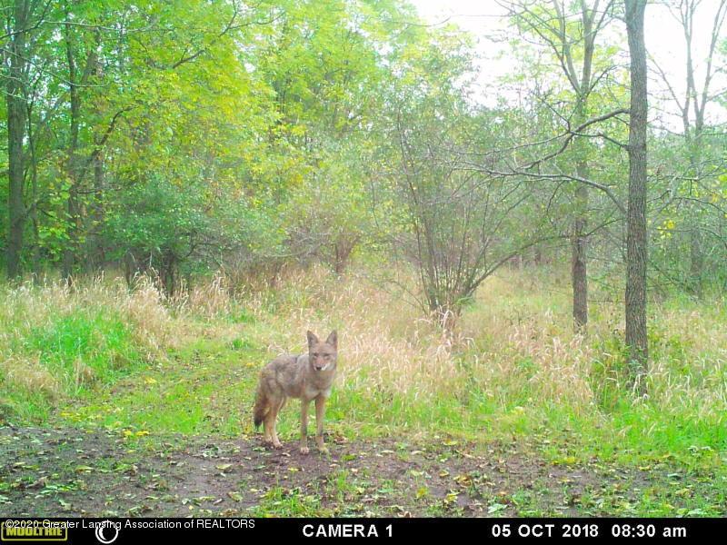 3445 W Gratiot County Line Rd - 57 - 54