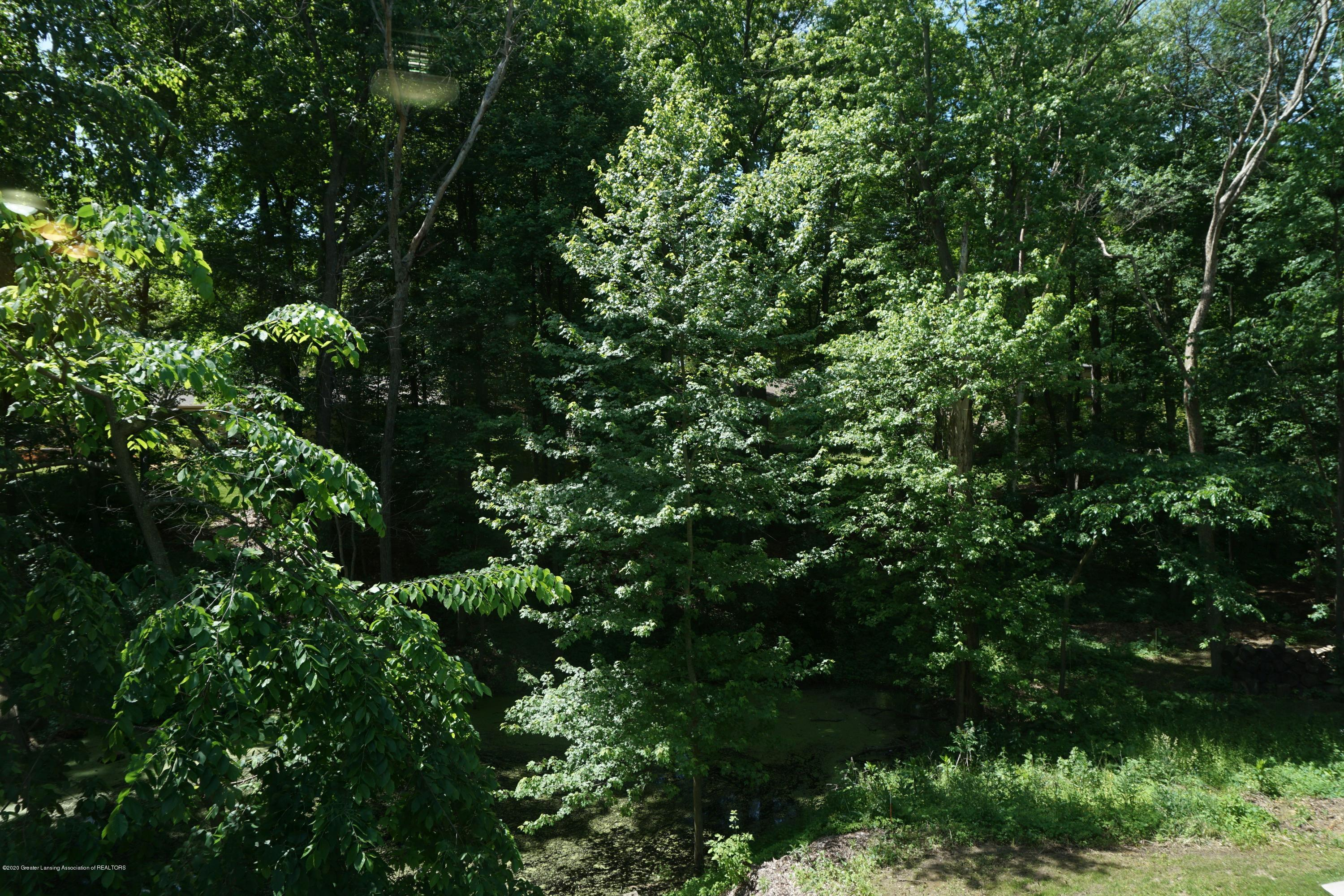 9720 Jason Rd - View from Upstairs - 21