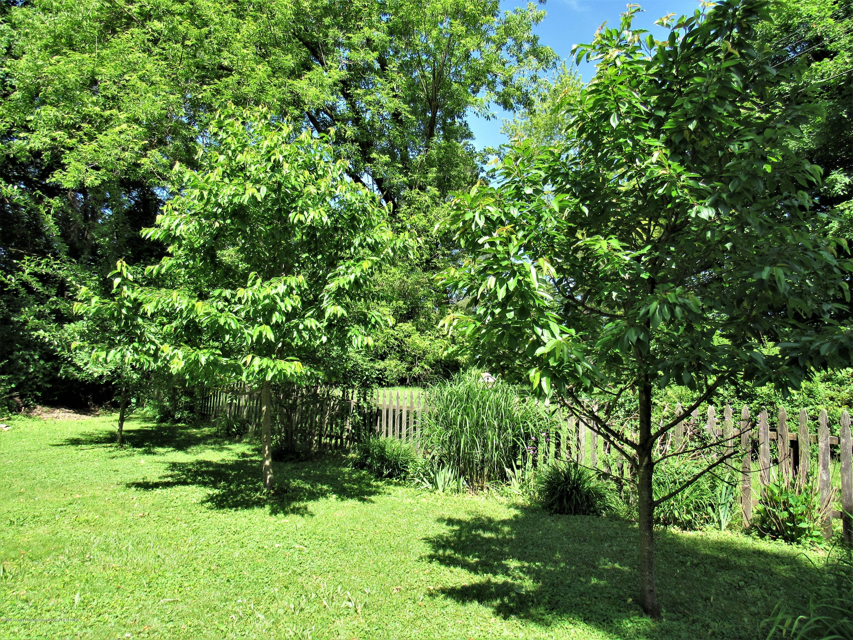 4120 Arlene Dr - Fruit Trees - 47