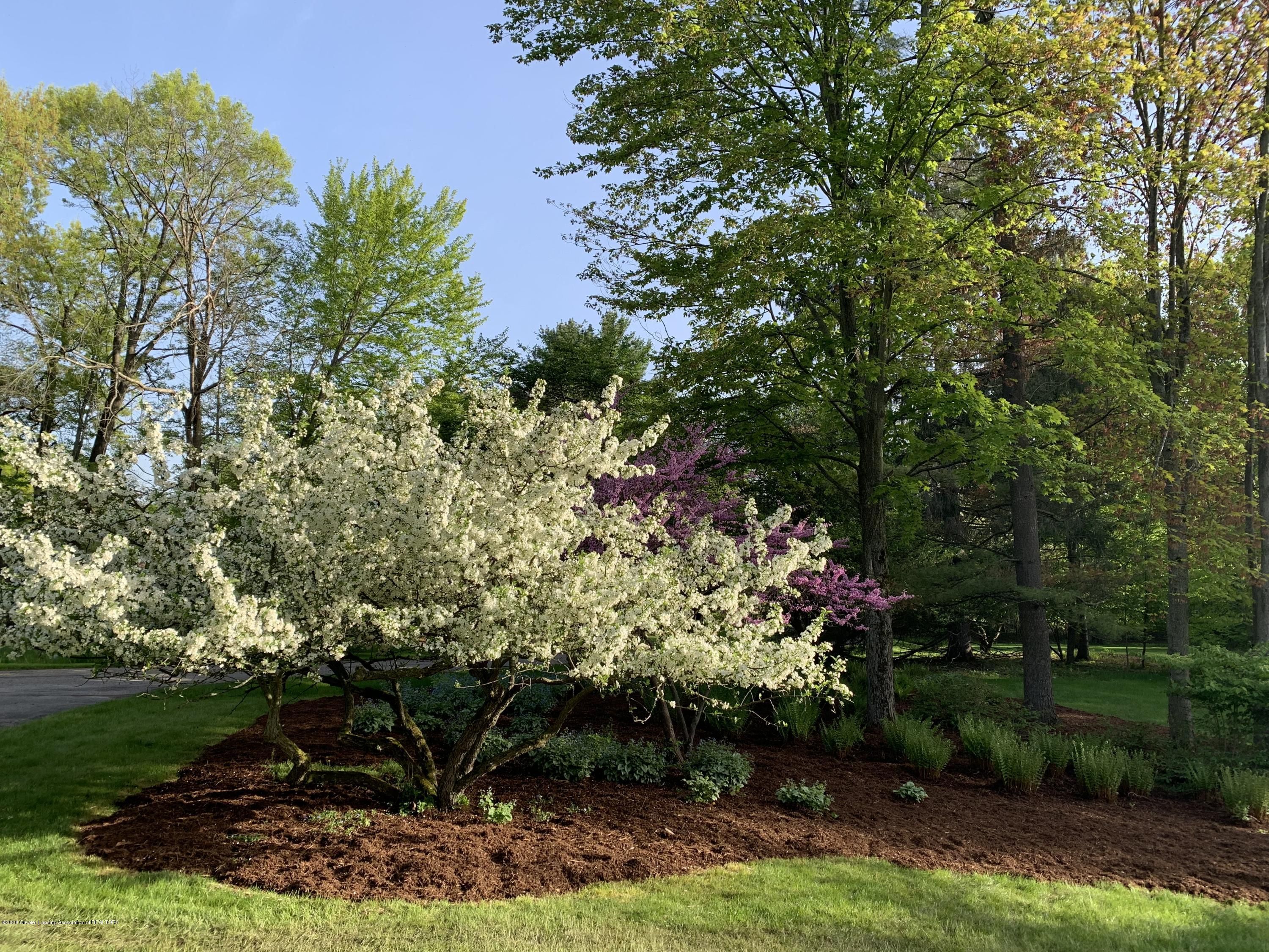 1172 Wrightwind Dr - Landscaping - 6
